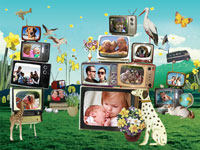 Photo collage Vintage TV Sets